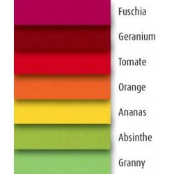 Coloris pour le sommier Déco de Relaxation Electrique 100x220
